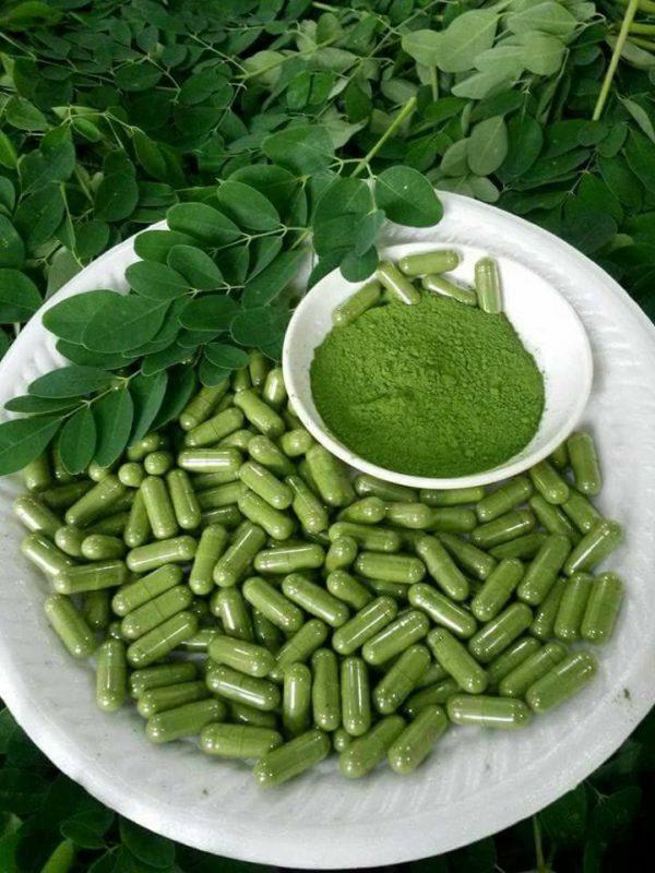 Moringa Powder Capsules Healthy Liver Function   Natural Solutions. Order Online Kratom   Order Wholesale Kratom   Natural Solutions